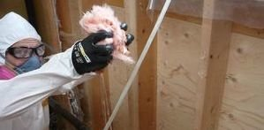 Mold Damage Restoration And Remediation
